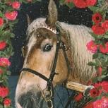 36.jesienna karta pocztowa z motywem konia